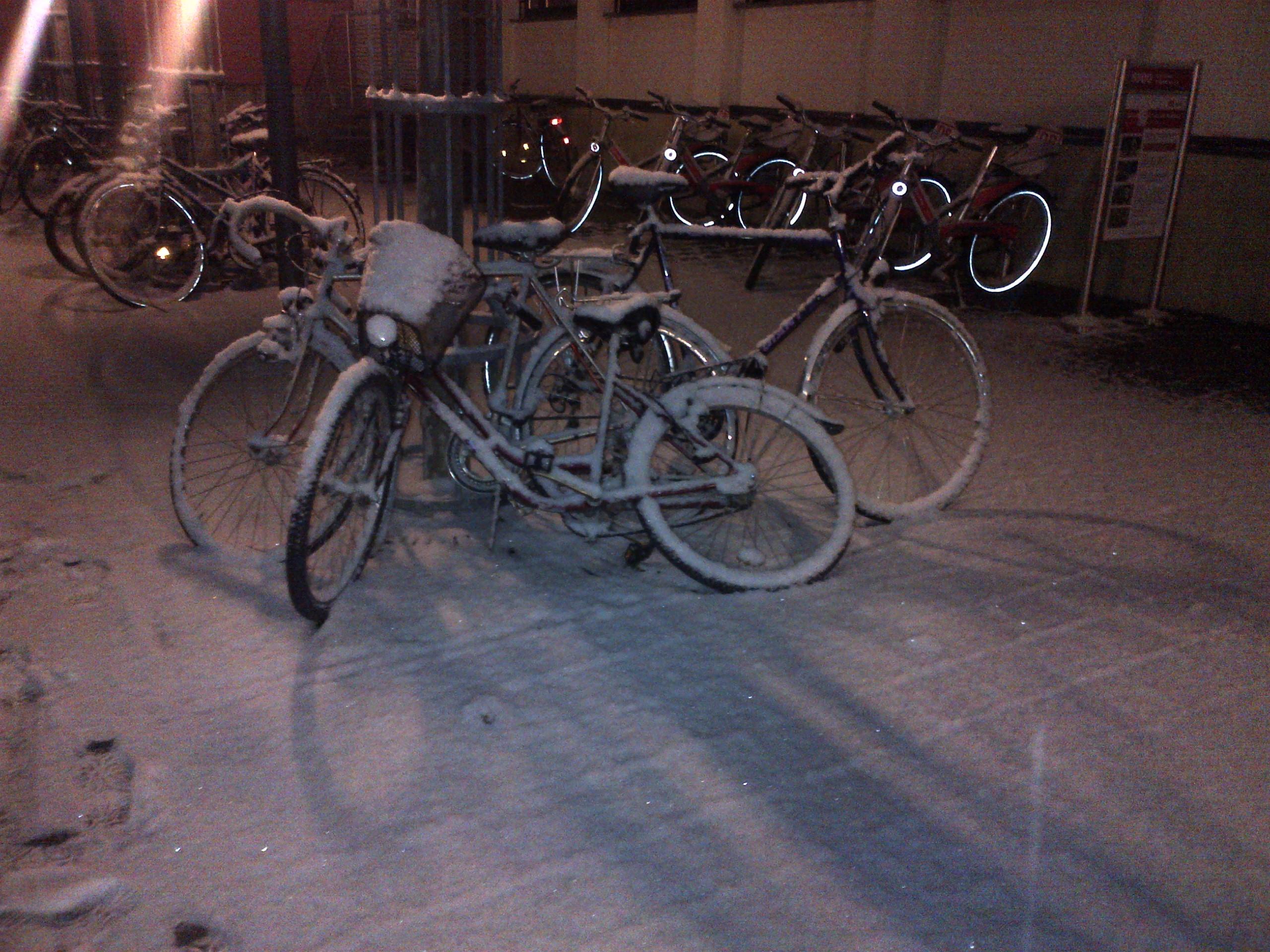 Freitag um 22.00 h in Ingolstadt